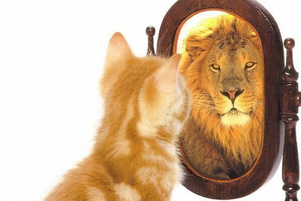 Lo specchio della nostra realtà