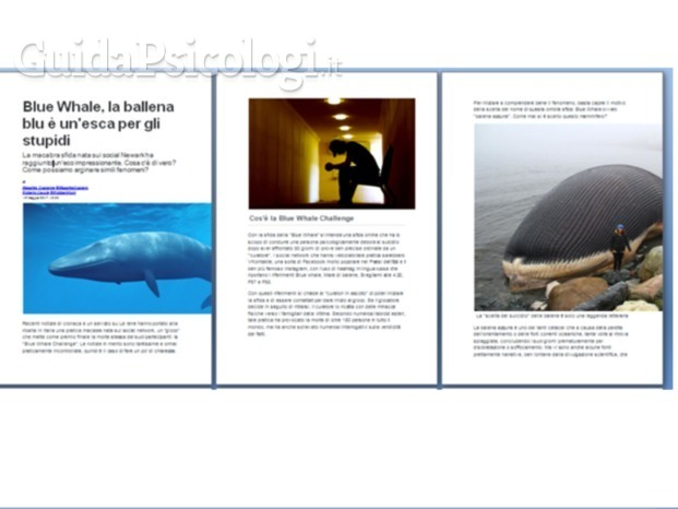 intervista su bluewhale